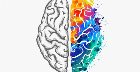 brain and color