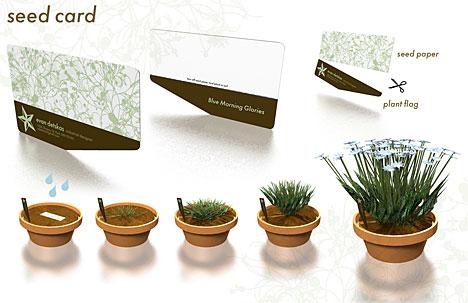 کاغذ بذر